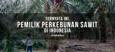 TERNYATA INI, PEMILIK PERKEBUNAN SAWIT DI INDONESIA