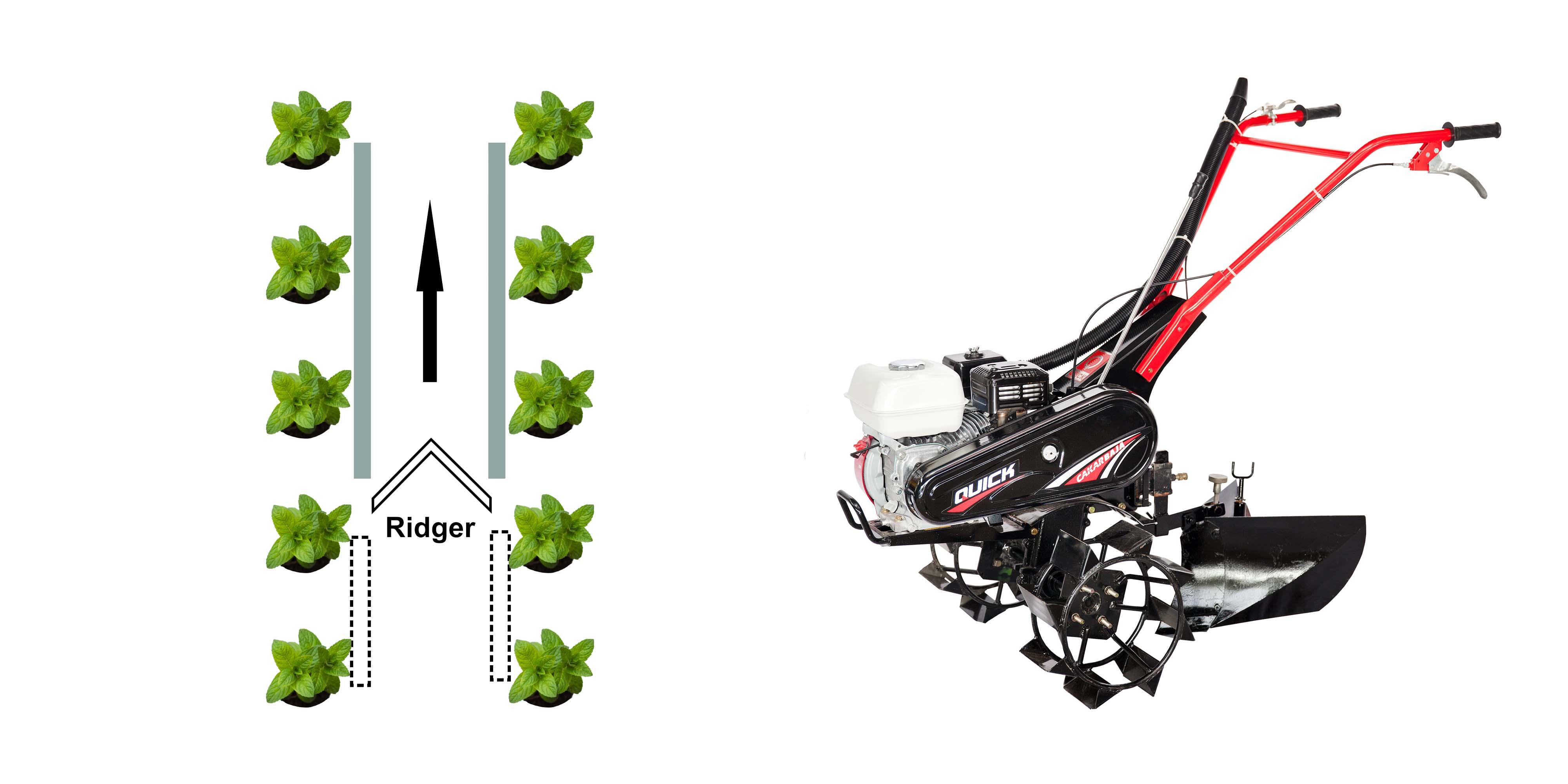 Gambar Denah Penutupan Pupuk dengan Ridger